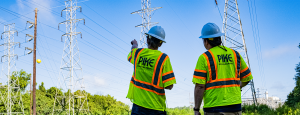 Pike Engineer conducting transmission system inspection